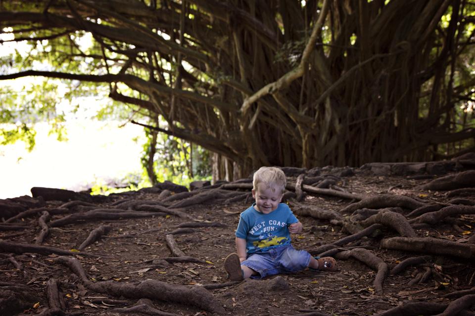 """Seal juures oli veel väike metsatukk, kus oli üks hiigelsuur ja vägev puu, mille """"koobastes"""" lapsed said peitust mängida"""