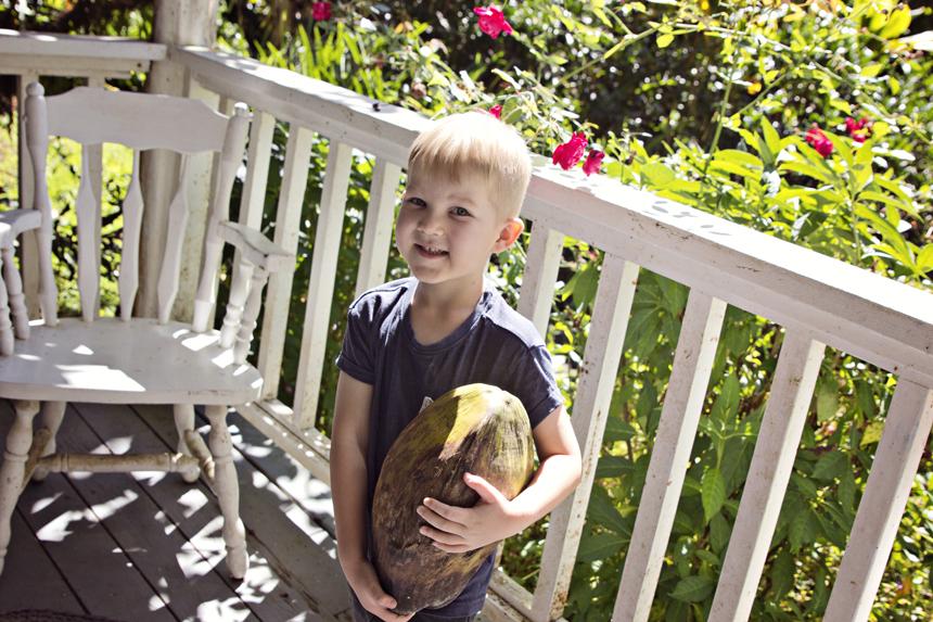 Pookospähkliga, nagu Kren enne pidevalt ütles :D Nüüd ma norin teda sellega ja ta aina parandab, et kookos ju, emme, kuidas sa siis ei tea :)